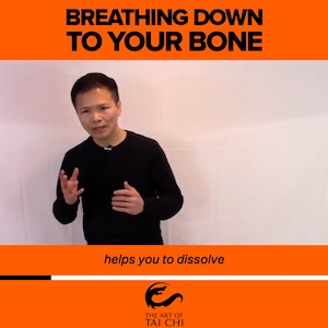 Breathing Down To Your Bone