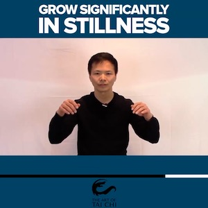 Grow Significantly In Stillness