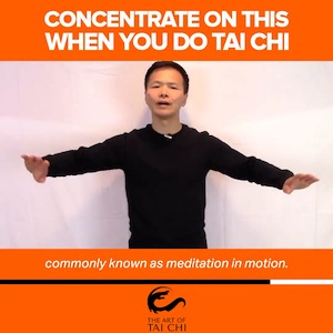 Concentrate On This When You Do Tai Chi